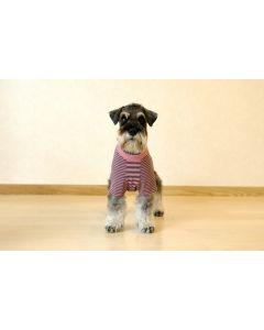 【犬の服】キュートなボーダーTシャツ型紙と作り方