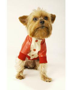 【犬の服】スタジアムジャンパー型紙と作り方
