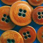 イタリア製ナットボタン